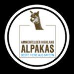Ammerfelder Highland Alpakas